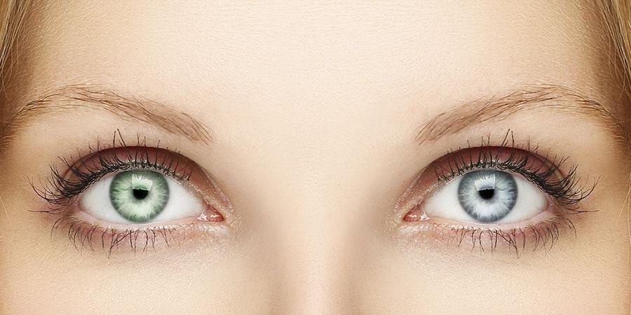 весов от чего разным цветом глаза картинки дешевый вариант