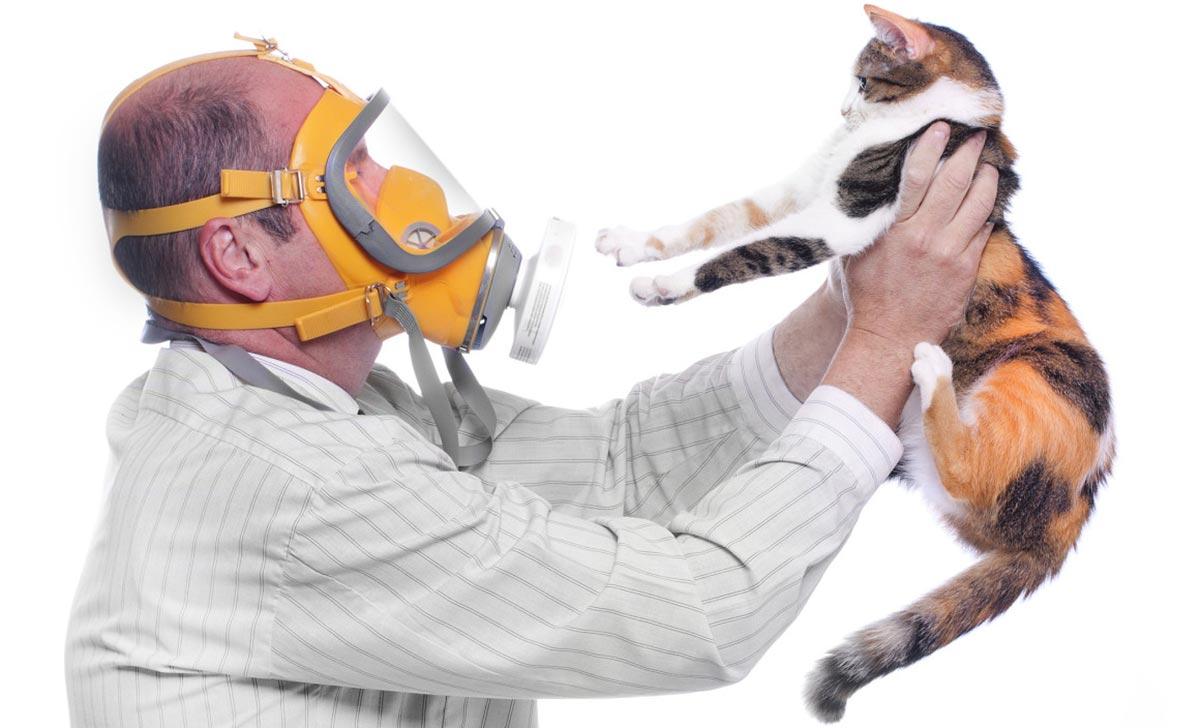 отсутствие контакта с известными аллергенами
