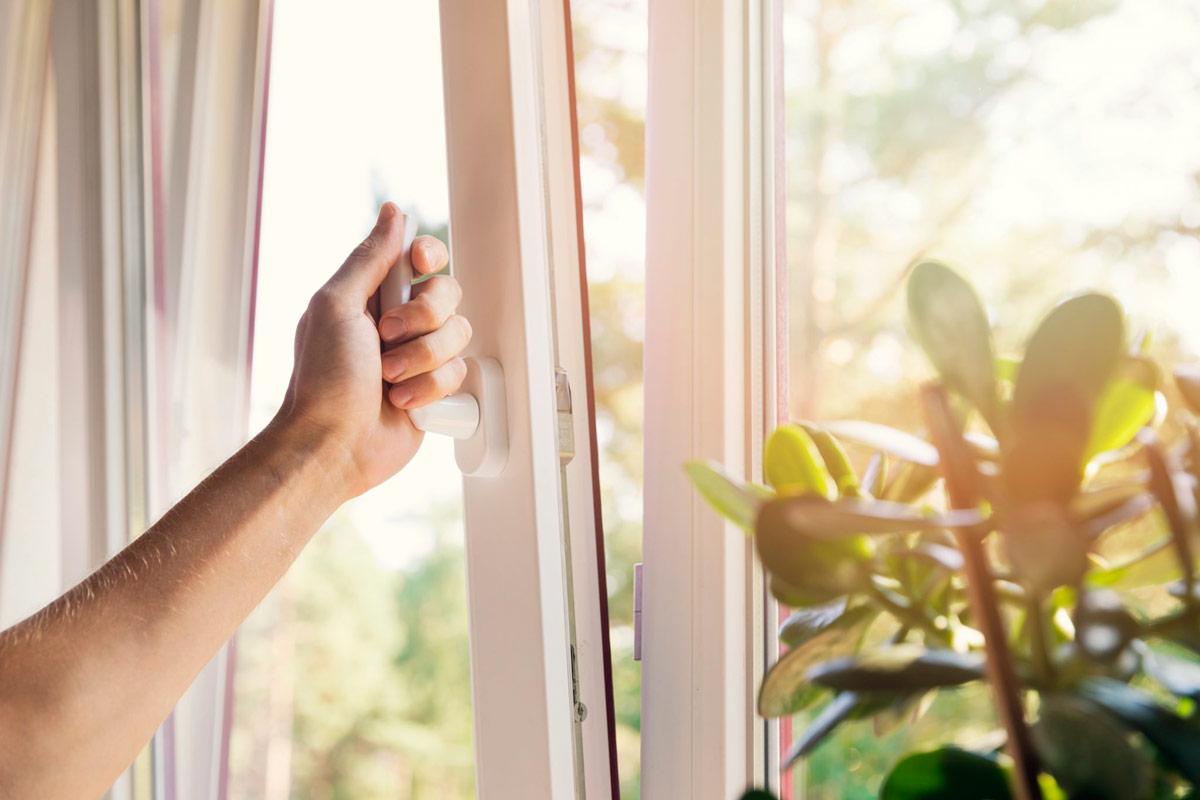 необходимо постоянно проветривать и увлажнять чистый воздух