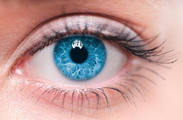 Что лучше очки или линзы при близорукости у детей школьного возраста